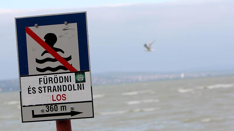 Haldoklik a Balaton - itt a bizonyíték